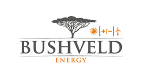 Bushveld Energy: an exciting year…