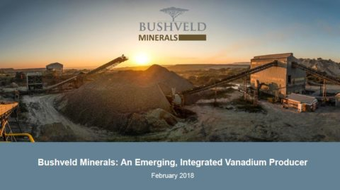 Fortune Mojapelo, Bushveld Minerals Chief Executive Officer, speaks at the 121 Mining Investment Conference in Cape Town