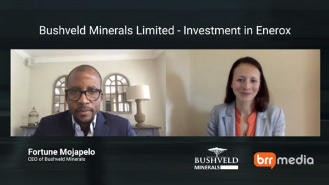 Bushveld Minerals – Investmenting US$30 million into Enerox